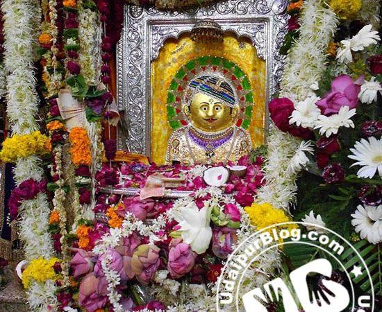 Udaipur Celebrated the birthday of Sagas Ji Bavji
