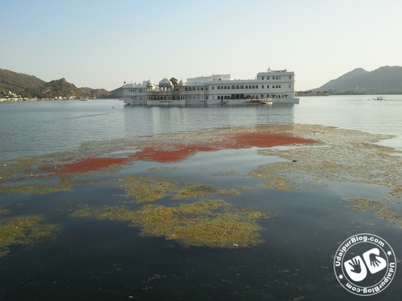 Ugly state of Lake Pichola near Hotel Taj Lake Palace