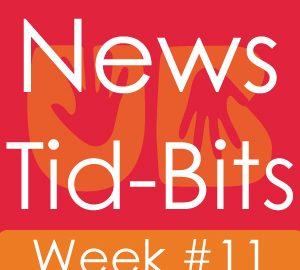 Udaipur News, News of Udaipur