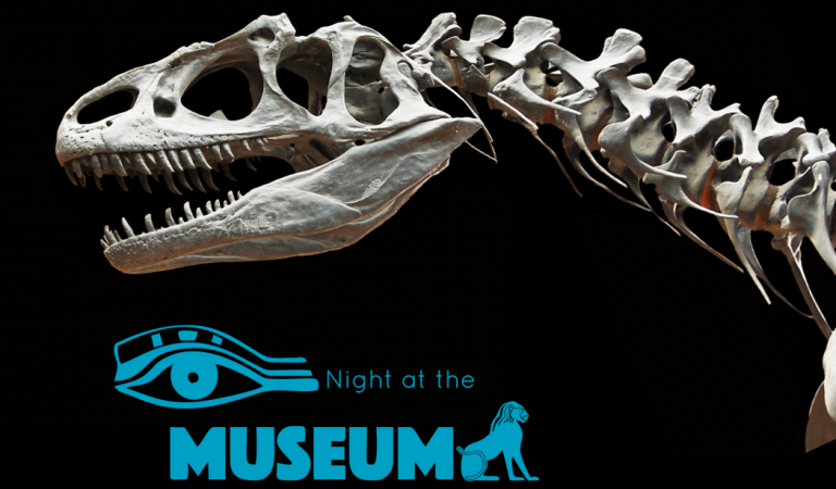 Party with Royalty: Night at the Museum