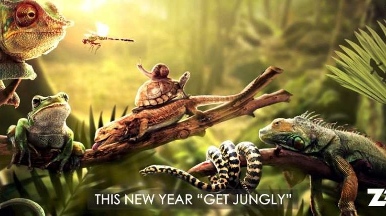 Make your New Year's Eve an evening to remember at the Royal Retreat Wild 2018
