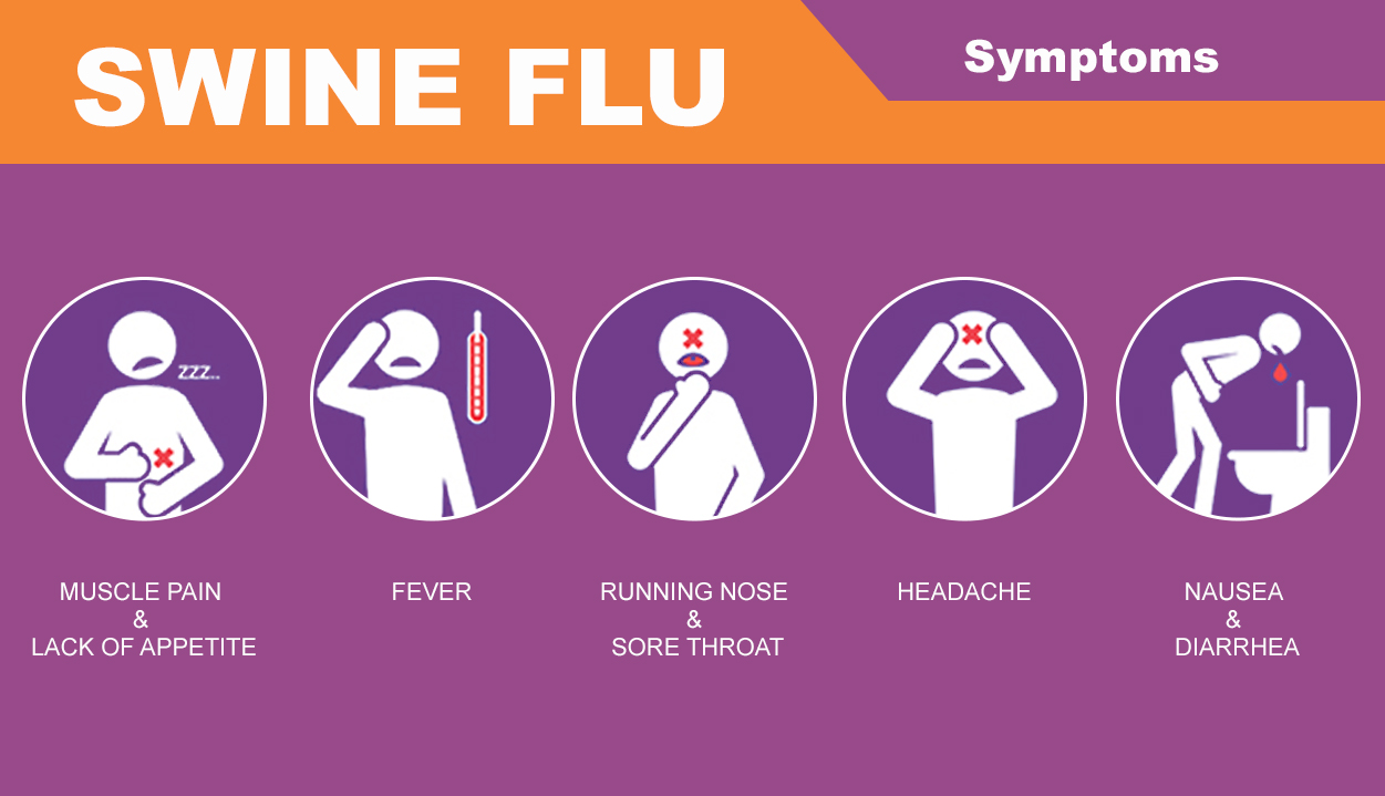 swine flu Swine influenza is an infection caused by any one of several types of swine influenza viruses swine influenza virus (siv) or swine-origin influenza virus (s-oiv) is any strain of the influenza family of viruses that is endemic in pigs.