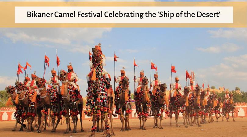Bikaner Camel Festival Celebrating the 'Ship of the Desert'