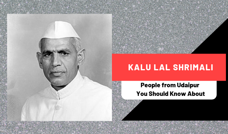 Kalu Lal Shrimali | People from Udaipur You Should Know About