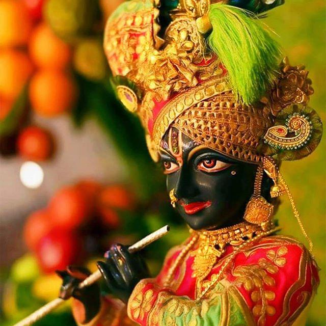 Krishna Janmashtmi 2019: Mewar's way of Celebration
