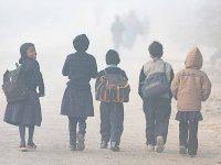 Udaipur Winters