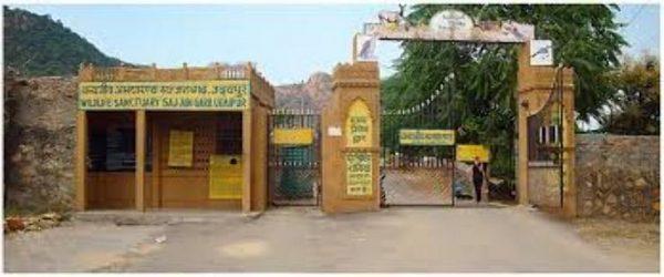 sajjangarh biological park